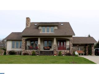 1008 Horseman Drive, Auburn, PA 17922 (#6962838) :: Ramus Realty Group