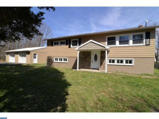204 Straub Avenue, Orwigsburg, PA 17961 (#6963017) :: Ramus Realty Group