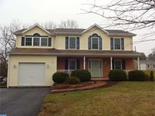 1248 Running Deer Drive, Schuylkill Haven, PA 17922 (#6963399) :: Ramus Realty Group