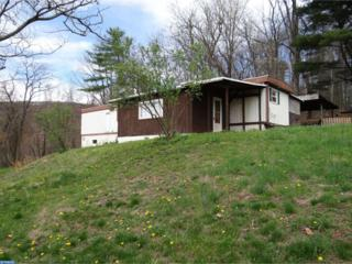 90 E 2ND MOUNTAIN Road, Schuylkill Haven, PA 17972 (#6965099) :: Ramus Realty Group