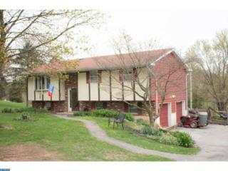 101 Cross Key Road, Bernville, PA 19506 (#6966872) :: Ramus Realty Group