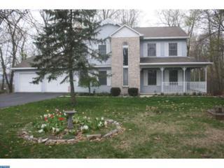 397 Schuylkill Mountain Road, Schuylkill Haven, PA 17972 (#6967452) :: Ramus Realty Group