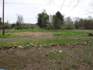 65 Blue Mountain Road, Schuylkill Haven, PA 17972 (#6969922) :: Ramus Realty Group