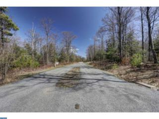 42 Hunters Mountain Drive, Hegins, PA 17983 (#6971228) :: Ramus Realty Group