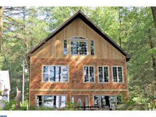 166 W Lake Drive, Pine Grove, PA 17963 (#6971630) :: Ramus Realty Group