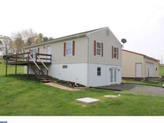 1672 Buckaroo Drive, Auburn, PA 17922 (#6971696) :: Ramus Realty Group