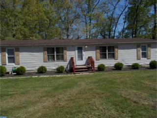 1 Copin Drive, Bridgeton, NJ 08302 (MLS #6972834) :: The Dekanski Home Selling Team