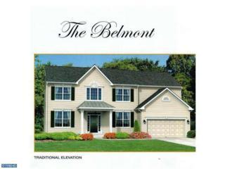 0 Carriage Drive Belmnt, Williamstown, NJ 08094 (MLS #6530232) :: The Dekanski Home Selling Team