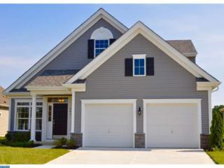 248 Ivy Road, Eht, NJ 08234 (MLS #6755949) :: The Dekanski Home Selling Team