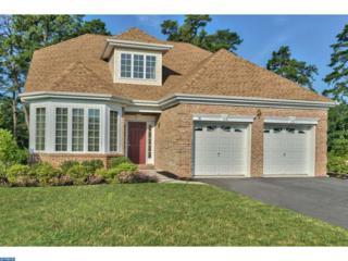 88 Ernst Court, Mays Landing, NJ 08330 (MLS #6784020) :: The Dekanski Home Selling Team