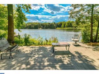 2 Tallowood Drive, Medford, NJ 08055 (MLS #6843819) :: The Dekanski Home Selling Team