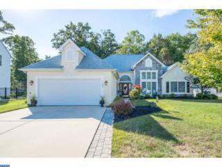 180 Billows Drive, Mount Royal, NJ 08061 (MLS #6860588) :: The Dekanski Home Selling Team