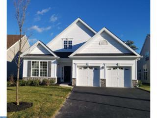 6 Ernst Court, Mays Landing, NJ 08330 (MLS #6876443) :: The Dekanski Home Selling Team