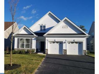 22 Ernst Court, Mays Landing, NJ 08330 (MLS #6876447) :: The Dekanski Home Selling Team