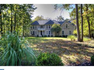 5 Franklin Court, Southampton, NJ 08088 (MLS #6878205) :: The Dekanski Home Selling Team