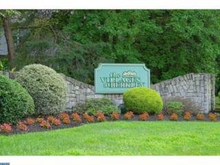 1052 Tristram Circle, Mantua, NJ 08051 (MLS #6881050) :: The Dekanski Home Selling Team