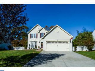 307 Kali Lane, Williamstown, NJ 08094 (MLS #6885044) :: The Dekanski Home Selling Team