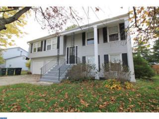 421 Denise Lane, Williamstown, NJ 08094 (MLS #6885238) :: The Dekanski Home Selling Team