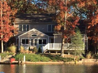 225 E Lake Boulevard, Medford, NJ 08055 (MLS #6893500) :: The Dekanski Home Selling Team