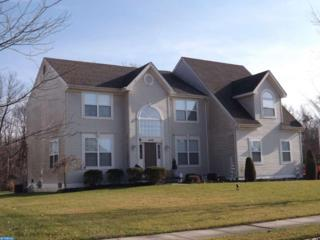 448 Huntingdon Drive, Williamstown, NJ 08094 (MLS #6901584) :: The Dekanski Home Selling Team