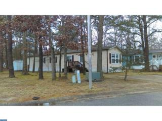 51 Hazeltop Drive, Sicklerville, NJ 08021 (MLS #6911793) :: The Dekanski Home Selling Team