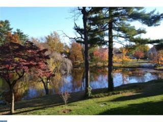 16 N Maple Street D1, Woodbury, NJ 08096 (MLS #6919280) :: The Dekanski Home Selling Team