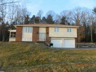 28 Molnar Lane, Ringtown, PA 17967 (#6923502) :: Ramus Realty Group