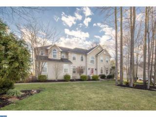 21 Skyline Circle, Mantua, NJ 08080 (MLS #6924795) :: The Dekanski Home Selling Team