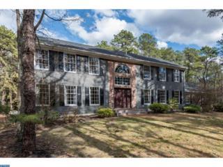 9 Downe Circle, Medford Twp, NJ 08055 (MLS #6925910) :: The Dekanski Home Selling Team