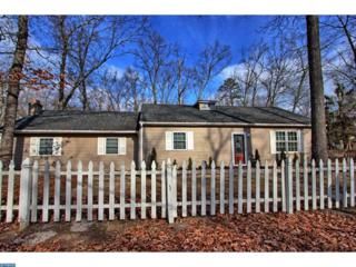 2 Maine Terrace, Browns Mills, NJ 08015 (MLS #6926046) :: The Dekanski Home Selling Team