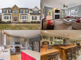 393 Rainey Road, Woolwich Township, NJ 08085 (MLS #6931803) :: The Dekanski Home Selling Team