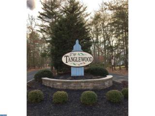 15 Highwood Court, Medford, NJ 08055 (MLS #6938559) :: The Dekanski Home Selling Team