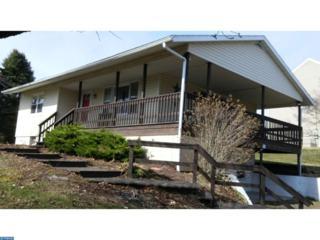 1429 Wynonah Drive, Auburn, PA 17922 (#6939307) :: Ramus Realty Group
