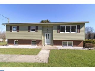 381 Ringtown Boulevard, Ringtown, PA 17967 (#6953788) :: Ramus Realty Group