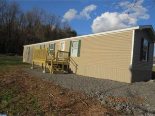 731 Mountain Road, Pine Grove, PA 17963 (#6956165) :: Ramus Realty Group