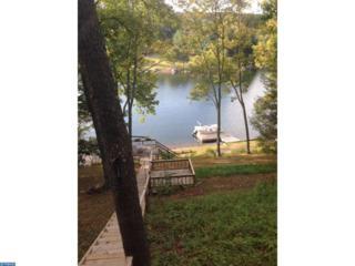 1450 Wynonah Drive, Auburn, PA 17922 (#6965363) :: Ramus Realty Group