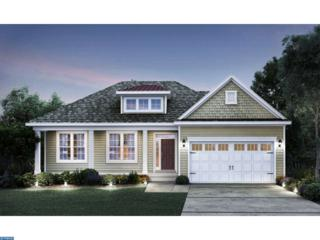 0 Carriage Drive Laurel, Williamstown, NJ 08094 (MLS #6590065) :: The Dekanski Home Selling Team