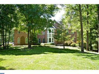 19 Benedek Road, Princeton, NJ 08540 (MLS #6734200) :: The Dekanski Home Selling Team