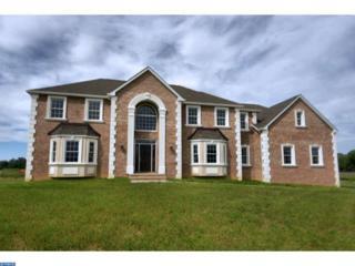 1 Sienna Court, Robbinsville, NJ 08691 (MLS #6751197) :: The Dekanski Home Selling Team