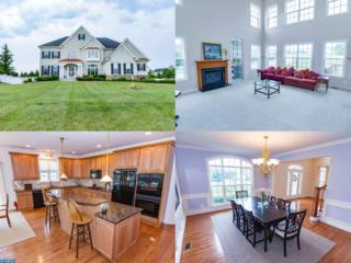 802 Castleton Drive, Mickleton, NJ 08056 (MLS #6818868) :: The Dekanski Home Selling Team