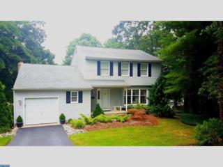 6 Slalom Court, Pine Hill, NJ 08021 (MLS #6827341) :: The Dekanski Home Selling Team