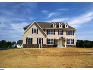 101 Alexa Way, Mullica Hill, NJ 08062 (MLS #6855385) :: The Dekanski Home Selling Team