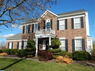 145 Davenport Drive, Chesterfield, NJ 08515 (MLS #6858178) :: The Dekanski Home Selling Team