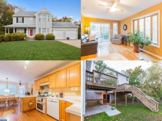 906 Muscovy Court, Mullica Hill, NJ 08062 (MLS #6883767) :: The Dekanski Home Selling Team