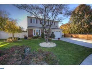 208 Canterbury Place, Williamstown, NJ 08094 (MLS #6893611) :: The Dekanski Home Selling Team