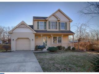 8 Willow Court, Sicklerville, NJ 08081 (MLS #6910266) :: The Dekanski Home Selling Team