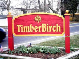 119 Tilford Road, Somerdale, NJ 08083 (MLS #6920062) :: The Dekanski Home Selling Team