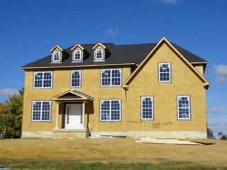 202 Maria Elena Drive, Mullica Hill, NJ 08062 (MLS #6855905) :: The Dekanski Home Selling Team