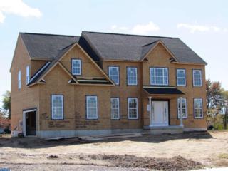 103 Alexa Way, Mullica Hill, NJ 08062 (MLS #6863869) :: The Dekanski Home Selling Team