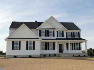 102 Alexa Way, Mullica Hill, NJ 08062 (MLS #6873617) :: The Dekanski Home Selling Team